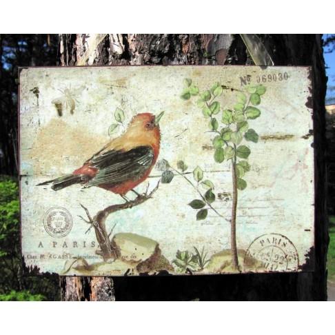 Tabliczka z ptakiem nr 3