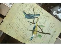 Tabliczka z ptakami nr 4